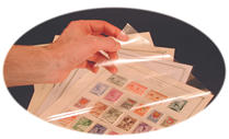 PAGE PROTECTORS: NATIONAL & SPECIALTY PAGES (25 PKG)