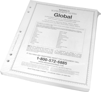 MINKUS: WORLDWIDE GLOBAL 2010 SUPPLEMENT PT. 2  (364 PAGES)