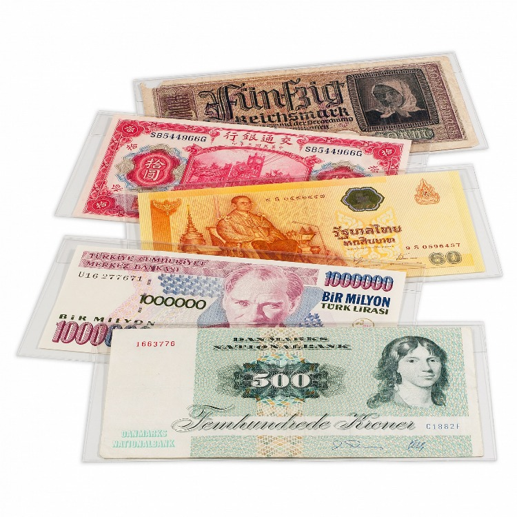 Clear Currency Sleeve - Large Notes (Pack of 50)