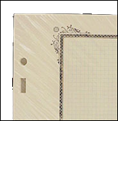 Scott Specialty Blank Pages - Quadrille